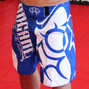 Renegade MMA Shorts Blue
